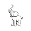 Elephant Vectors
