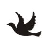 Flying Bird Vector, Pigeon 3