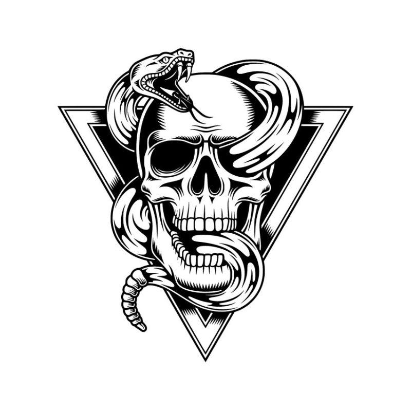Skull Vector, Skeleton Vectors, Skull crd files, Skull Photos, Skull Corel files, Skull PSD files, Skull Silhouette, Skeleton vector, Skelet vector, Head Skull vector, Foal Vector