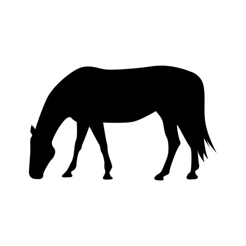 Horse Vector, Horse Vectors, Horses Vectors, Animals Vectors, Horse Silhouette, Mustang Vector, Pony Vector,head Horse Vector, Foal Vector (2)