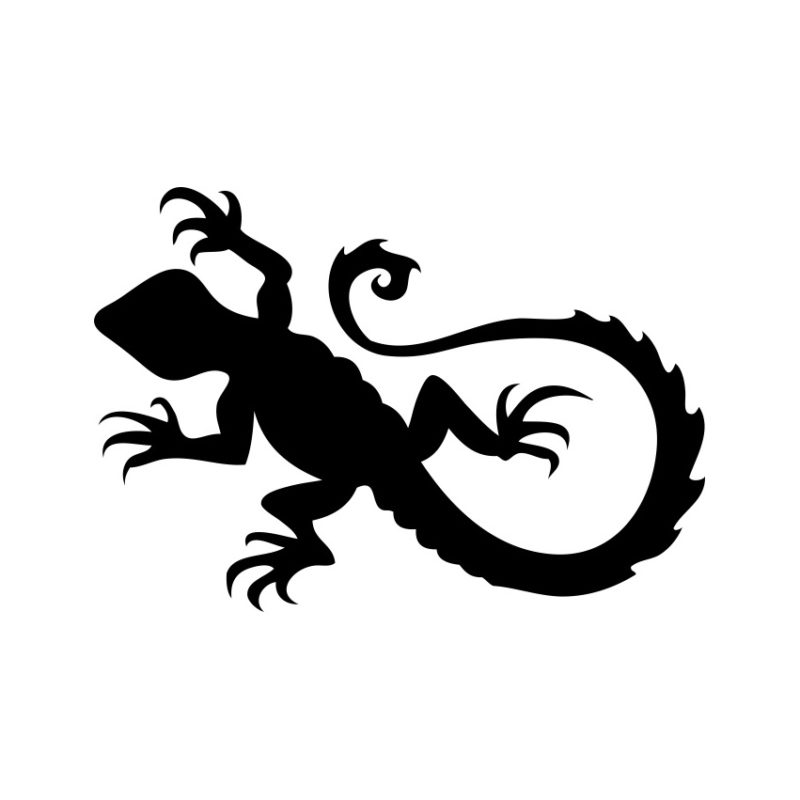 Lizard Vector, Lizard Vectors, Lizards Vectors, Animals Vectors, Lizard Silhouette, Varangian Vector, Pony Vector, Head Lizard Vector, Foal Vector