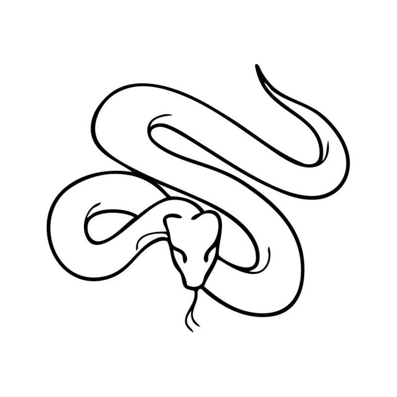 Snake Vector, Snake Vectors, Snake Crd Files, Snake Photos, Snake Corel Files, Snake Psd Files, Snake Silhouette, Animal Vector, Pony Vector, Head Snake Vector, Foal Vector