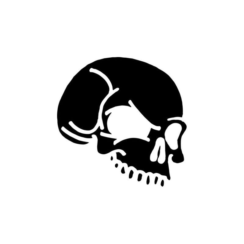Skull Vector, Skeleton Vectors, Skull Crd Files, Skull Photos, Skull Corel Files, Skull Psd Files, Skull Silhouette, Skeleton Vector, Skelet Vector, Head Skull Vector, Skeleton Head Vector