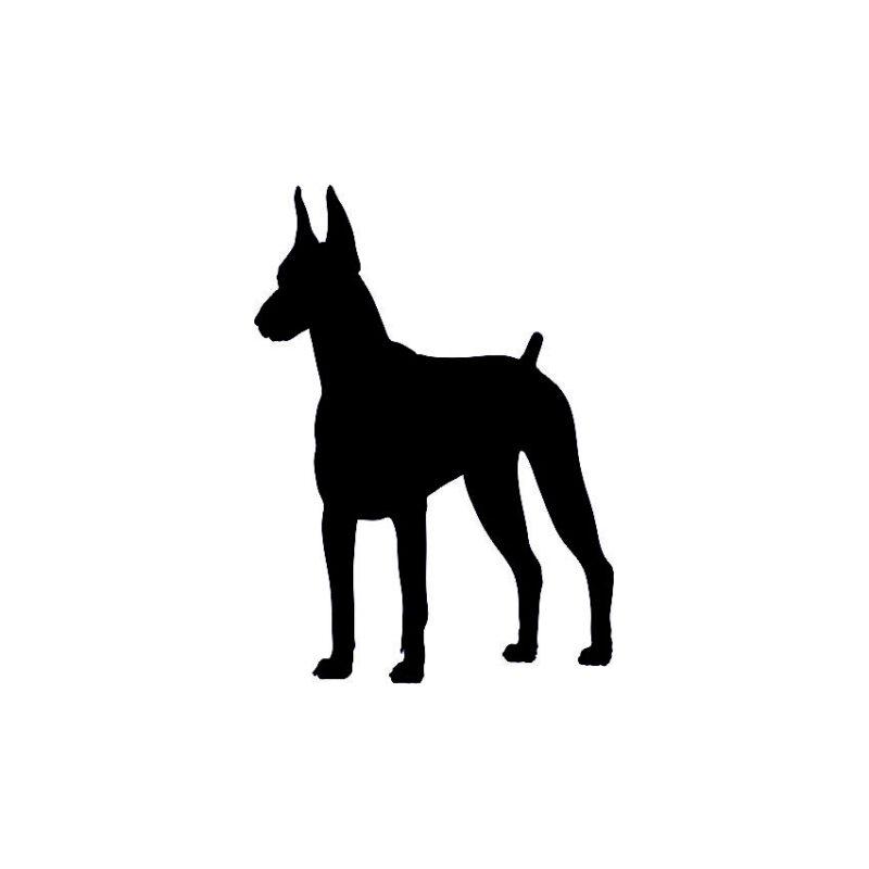 Dog Vector2