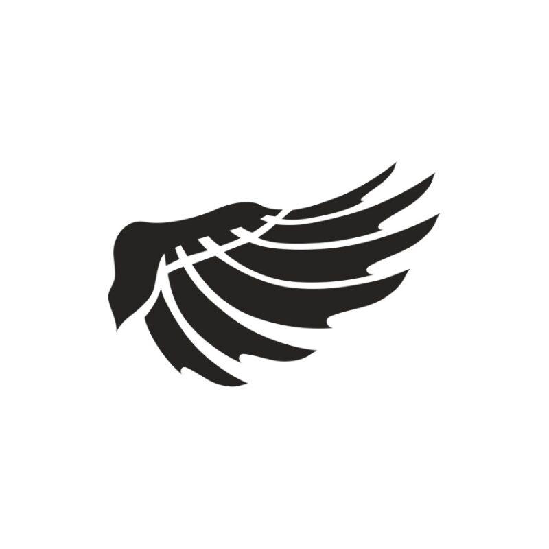 Wings Vector 5