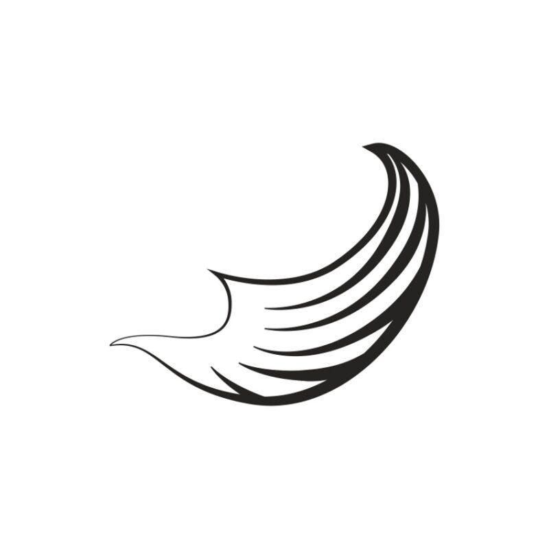 Wings Vector 6