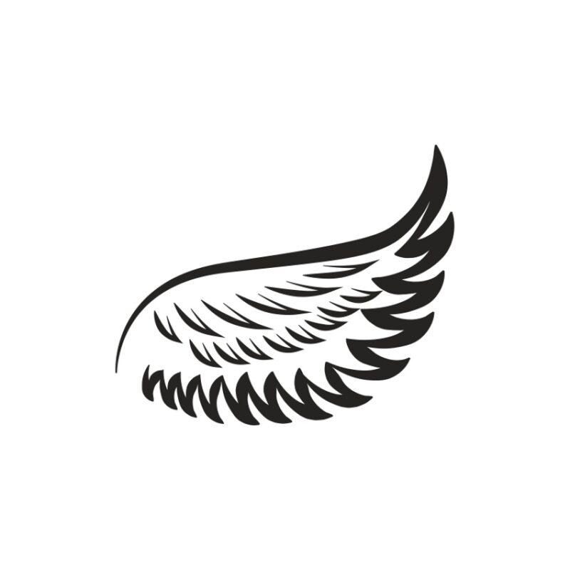 Wings Vector 8