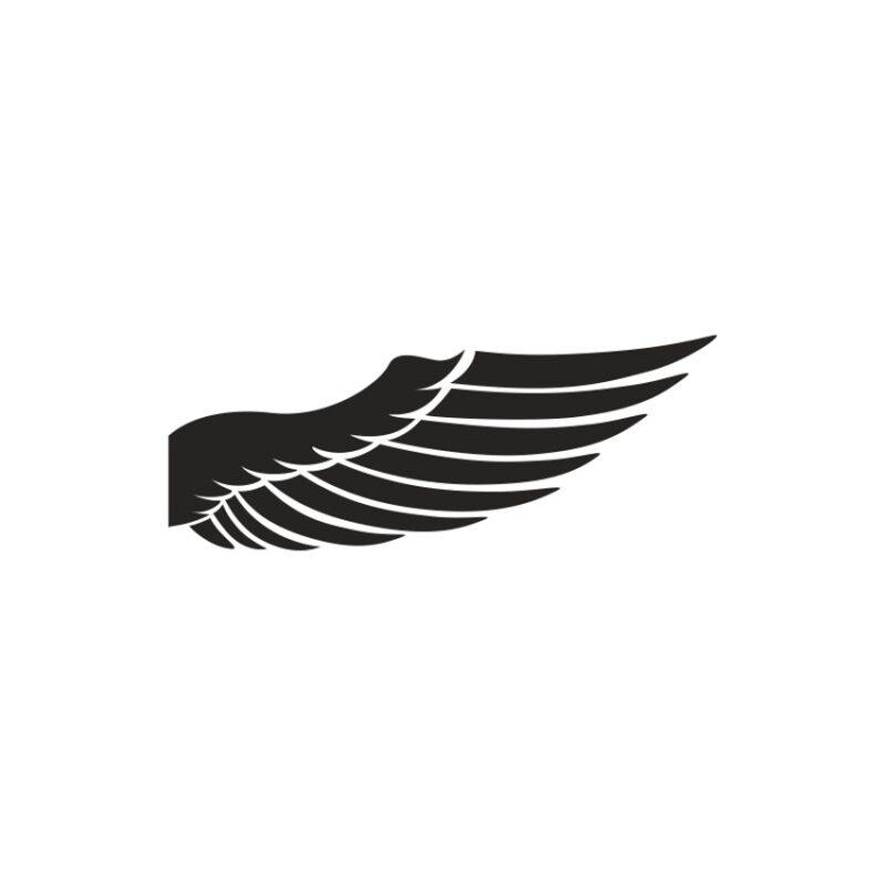 Wings Vector 9